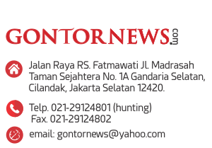 gontornews ifo widget